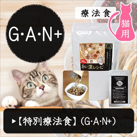 食事療法 みらいのキャットフード GAN+