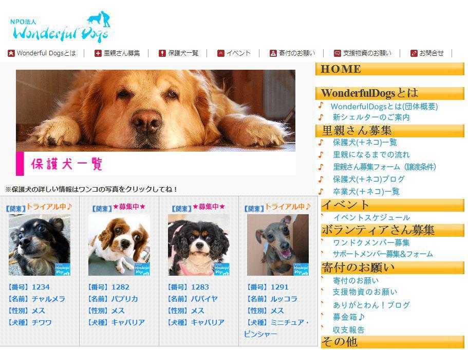 保護犬猫情報サイト NPO法人Wonderful Dogs様
